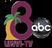 175px-WSVI Logo