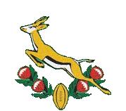 Springboks 1992-96