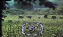 NABTelevisioncodeWFAA1970'S