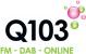 Q103 2007
