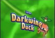 Toon Disney later Darkwing Duck 2004