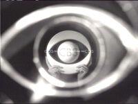 Cbs1995