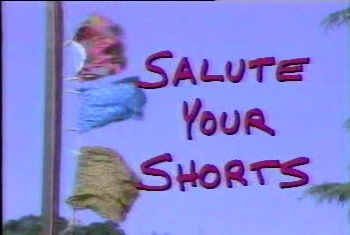 File:SaluteYOurShorts.png