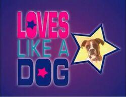 Loves Like a Dog