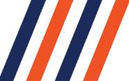 NYI 1998 Alt Logo