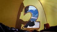 Bbc2 tent polar 2009
