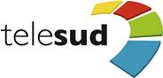 TELESUD 2010