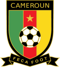 Cameroon 2010crest
