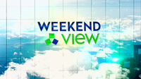 Weekend View New Logo Spring 2011