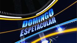 Domingo Espetacular 2010 vinheta