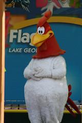 File:Foghorn Leghorns in Six Flags COVER.jpg