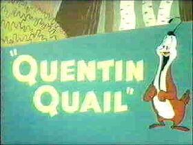 Quentinquail