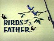 File:Birdsfeather.jpg