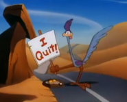 Animaniacs Road Runner