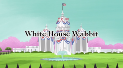 White House Wabbit
