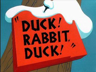 File:Duckrabbitduck.jpg