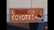 Wile E. Coyote Tiny Toon Adventures movie