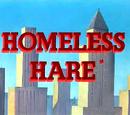 Homeless Hare