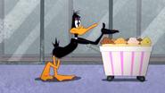 Working Duck (25)
