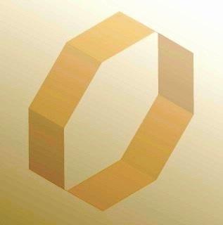 Archivo:Octagon ring.jpg
