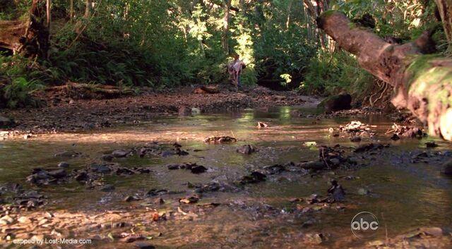 Archivo:River5x11.jpg