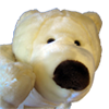 File:Polarbearicon.png