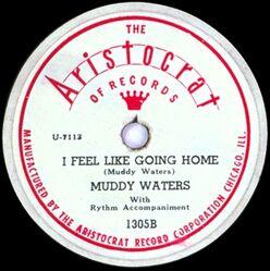 I Feel Like Going Home - Muddy Waters