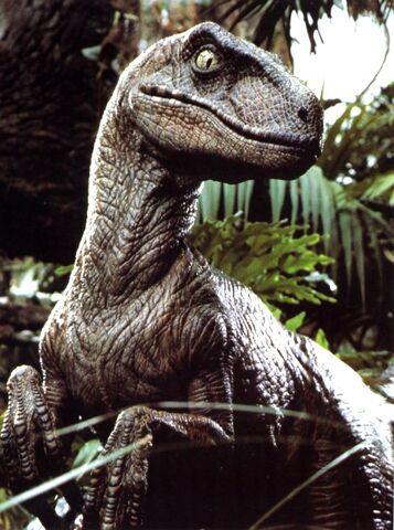 File:2velociraptor.jpg