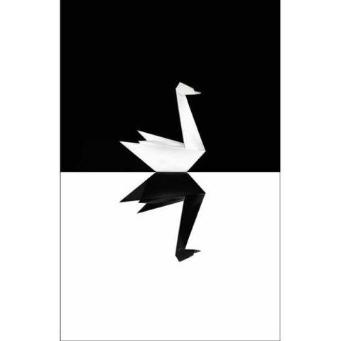 File:The Black Swan UK edition cover.jpg