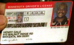 Henry Gale MN License.jpg