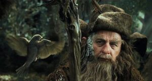 Radagast-bird