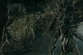 Ents.png