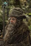 Radagast; The Brown