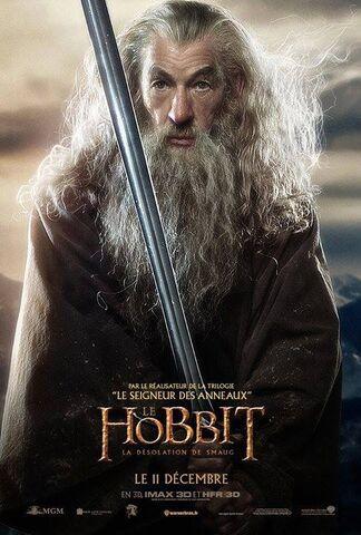 File:FR Desolation - Gandalf.jpg