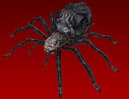 File:Giant Spider.jpg