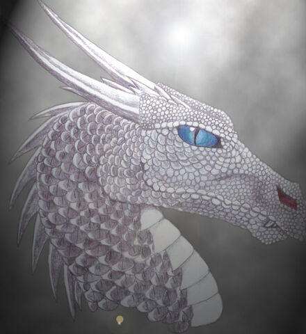 File:Silver dragon by kanowyn.jpg