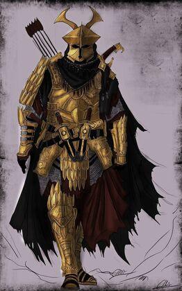Chakin armour