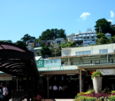 Travel Event: Trip to Atami
