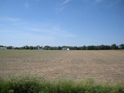 Hyphon's Farm