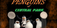 Penguins of Central Park