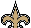 New Orleans Saints (2013)