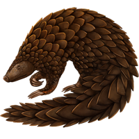Huge item pangolin 01
