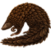 Item pangolin 01