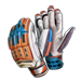 Item cricketgloves 01