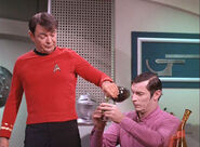 Green in the 23rd century