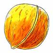 FaerieWalnut