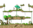 Map Forest Crossroad