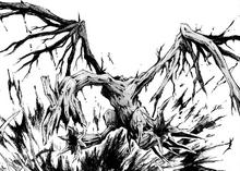 Bird of Rotten Wood