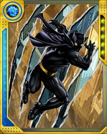 BlackLeopardBlackPanther5