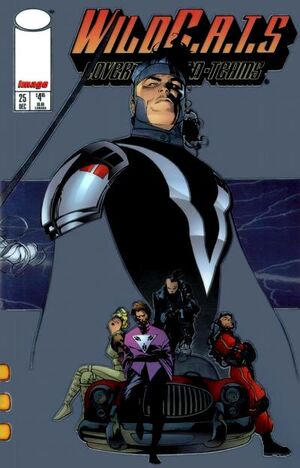 Cover for WildC.A.T.s #25 (1995)
